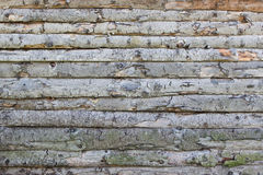 Rough old wall of log Royalty Free Stock Images