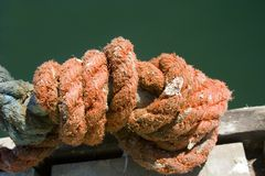 Rough orange rope tied in knot Stock Image