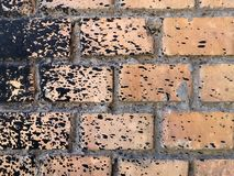 Rough peach brick wall splattered with black resin royalty free stock photos
