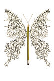Rough pen sketch made butterfly Royalty Free Stock Image