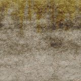 Rough plaster seamless generated texture Stock Images