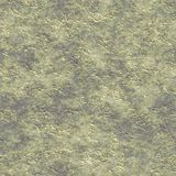 Rough plaster seamless generated texture Stock Image