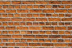 Rough red bricks and mortar Royalty Free Stock Photos