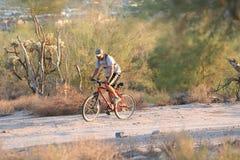 Rough ride. Mountain biker in desert Stock Photos