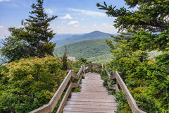 Rough Ridge Boardwalk Blue Ridge Mountains NC Royalty Free Stock Image