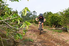Rough riding in Costa Rica. Heredia, Costa Rica - May 08: Young man riding his mountain bike on rough roads true  coffee plantation. May 08 2016 Heredia, Costa Royalty Free Stock Images
