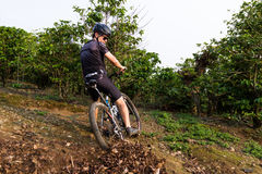 Rough riding in Costa Rica. Heredia, Costa Rica - May 08: Young man riding his mountain bike on rough roads true  coffee plantation. May 08 2016 Heredia, Costa Stock Photography