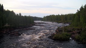 Rough river flows through the forest stock video