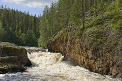 Rough river with rapids. Oulanka, Northern Finland Royalty Free Stock Photography