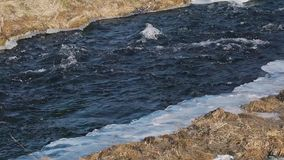 Rough river in spring closeup.  stock video footage
