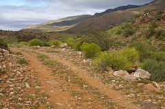 Free Rough Road In The Nama Karoo Shrubland Stock Images - 36808424