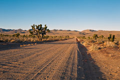 Rough Saline Valley Road to a junction in Lee Flat Stock Photography