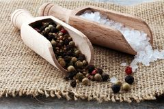Rough salt and mixed peppercorns on wooden shovels.  royalty free stock images