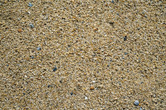 Rough sand texture Royalty Free Stock Photography