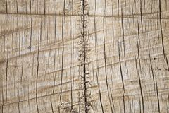 Rough Wood Background Stock Photos