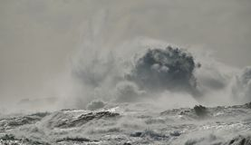 Rough sea and big wave. When breaking against the rocks, coast of Gran canaria Royalty Free Stock Image