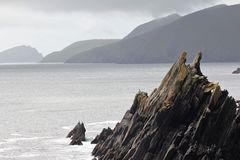 Rough sea cliffs in the western ireland. Birds on the cliffnmisty foggy se shore ocean cliff royalty free stock image