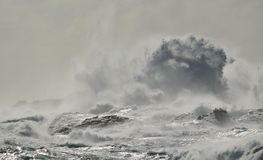 Rough sea on the coast. And big wave when breaking against the rocks, Gran canaria Stock Images