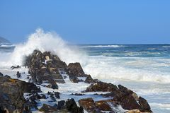 Rough Sea & High Waves, Storm`s River, Tsitsikamma, South Africa. Rough sea & high breaking waves at the mouth of Storm`s River, Tsitsikamma National Park, South royalty free stock image