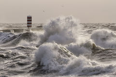 Rough sea on the river mouth Stock Photography