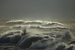 Rough sea Royalty Free Stock Images