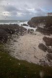 Rough seas at Rhoscolyn Headland Royalty Free Stock Photo