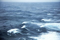 Rough seas. Very rough seas in mid ocean Royalty Free Stock Image