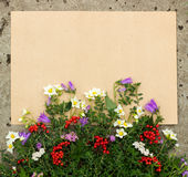 Rough sheet of paper and flowers on the pavement Royalty Free Stock Photography