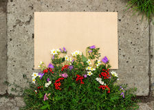 Rough sheet of paper and flowers on the pavement Stock Image