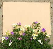 Rough sheet of paper and flowers on the pavement Stock Images