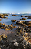 Rough shoreline. Picture of a rough rocky shoreline under a clear blue sky. Room for text at the top Stock Photography