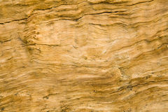 Rough Split Log. Wood grain on a log roughly split Royalty Free Stock Photo