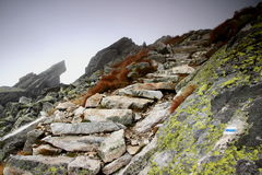 Rough stone stairs lead into the unknown on a slope in the fog. Rough stone stairs on a waymarked trail lead into the unknown in the autumn fog on a rocky Stock Photography