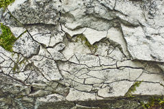 Rough stone surface. Stock Photography