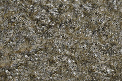 Rough stone surface texture Stock Image