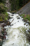 Rough stormy river in rocky mountains Royalty Free Stock Photos