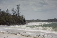Rough surf on the beach at Fort De Soto, Florida. Rough water hits the beach on a windy spring day in Fort De Soto Park, St. Petersburg, Florida Stock Images