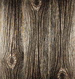 Rough surface of old wood Royalty Free Stock Photography