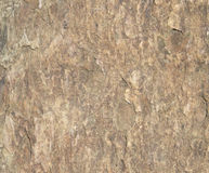 Rough surface of stone texture Stock Photos