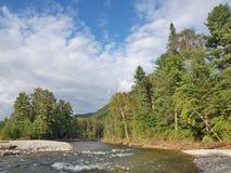 Rough taiga river Stock Photography