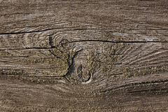 Rough texture on antique wood Stock Image