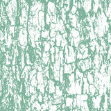 Rough texture of bark. Grunge vector background Royalty Free Illustration