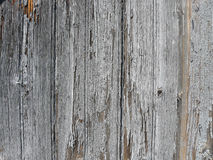 Rough textured wood background Stock Photo