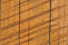 Rough textured wood background Stock Image