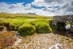 Rough Tor Bodmin Moor Cornwall Stock Image