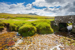 Rough Tor Bodmin Moor Cornwall Stock Image
