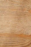 Rough uncolored wooden surface texture Stock Images