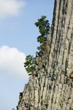Rough, unique vulcanic rock formations with single trees on the edge Stock Photography