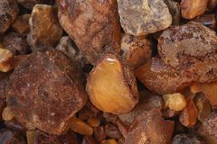 Rough and unpolished amber Stock Images
