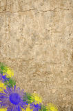 Rough wall with flowers. Royalty Free Stock Images